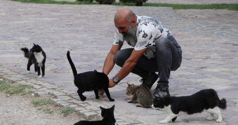 Denizli'de Beslediği Kediler Yüzünden Mahkemelik Oldu